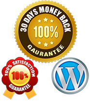 Website designing $389 you save $867