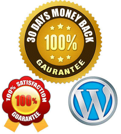 30 days money back gaurantee - 100% Satisfaction Guarantee - Wordpress framework - A fully functional CMS / Blog website for just $389